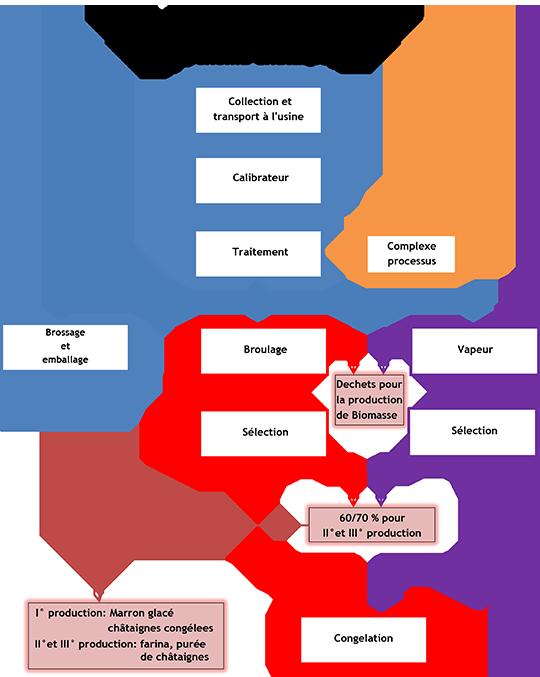 Schema di flusso linea castagne_fr